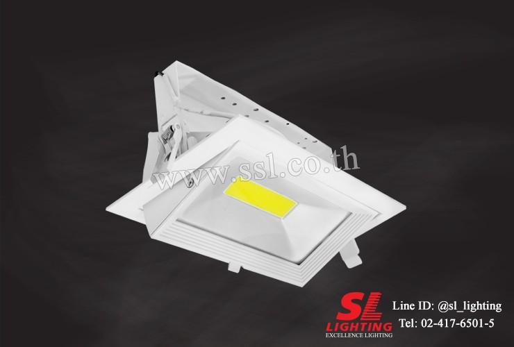SL-6-W-725 LED 30W 3000K