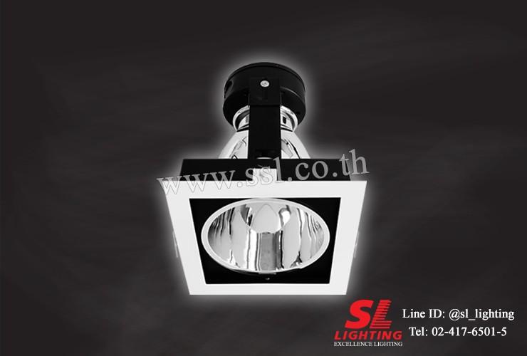 SL-6-SW-667
