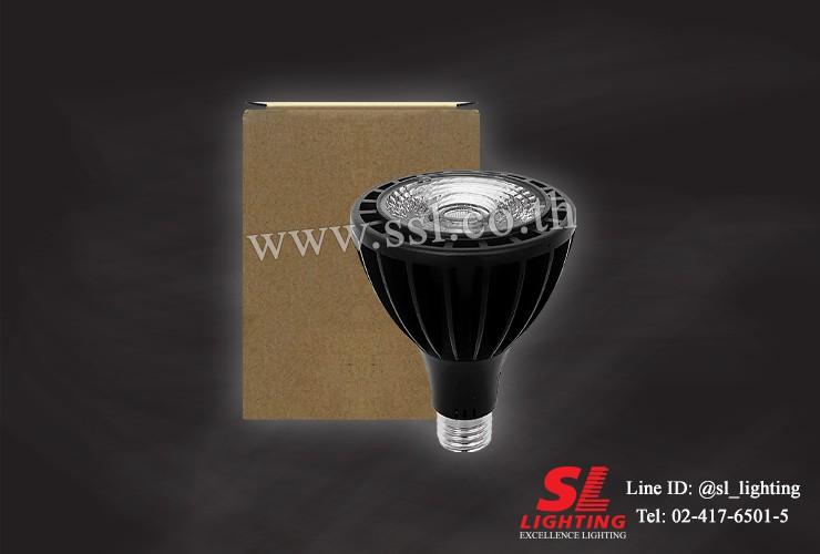 SL-9-P316-PAR30-6500K