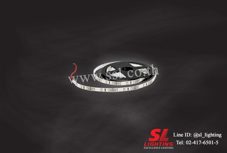 SL-9-2835 60P/WM